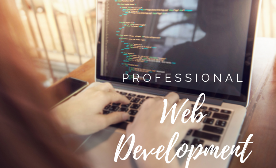 Hiring a Professional Web Development Company in Ahmedabad