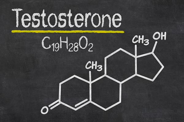 Proven Ways of Increasing Testosterone Has Revealed